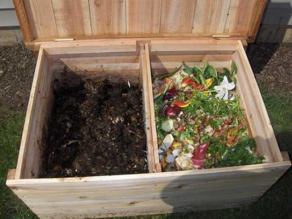 можно ли класть лук в компост